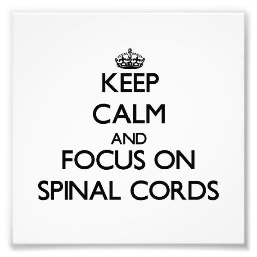 Keep Calm and focus on Spinal Cords Photo