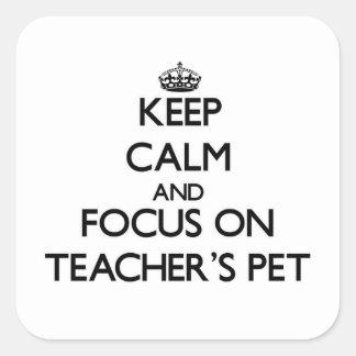 Keep Calm and focus on Teacher S Pet Square Sticker