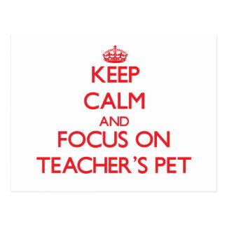 Keep Calm and focus on Teacher'S Pet Post Card