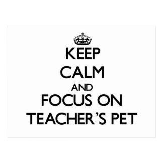 Keep Calm and focus on Teacher'S Pet Postcards