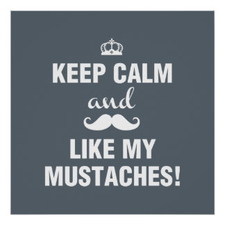Keep Calm and like my mustaches funny quote Poster