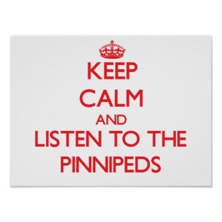 Keep calm and listen to the Pinnipeds Poster