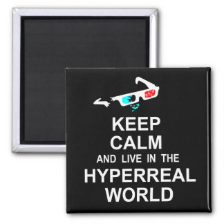 Keep calm and live in the hyperreal world magnet