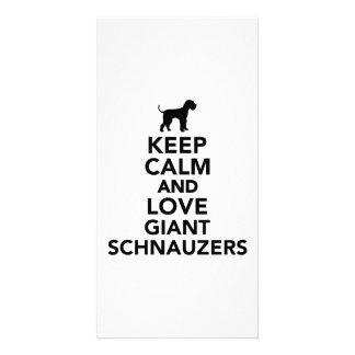 Keep calm and love Giant Schnauzers Photo Greeting Card