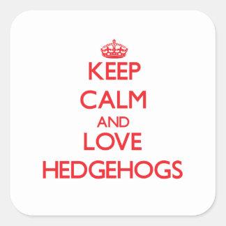 Keep calm and love Hedgehogs Square Sticker