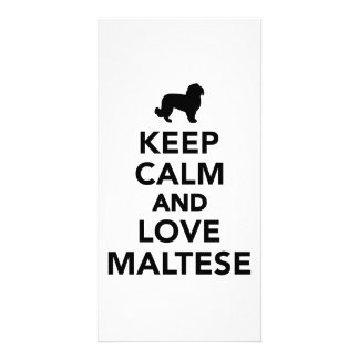 Keep calm and love Maltese Custom Photo Card