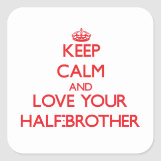 Keep Calm and Love your Half-Brother Stickers