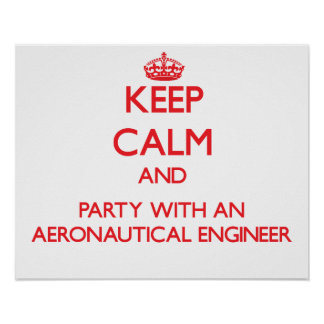Keep Calm and Party With an Aeronautical Engineer Posters