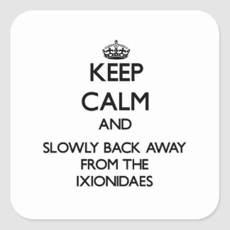 Keep calm and slowly back away from Ixionidaes Square Stickers