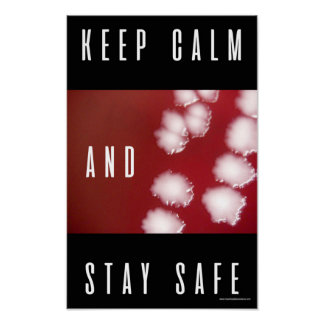 Keep calm and stay safe. Basic safety Poster