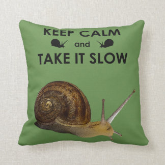 Keep Calm and Take it Slow Pillow (Green)