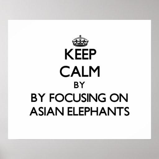 Keep calm by focusing on Asian Elephants Print