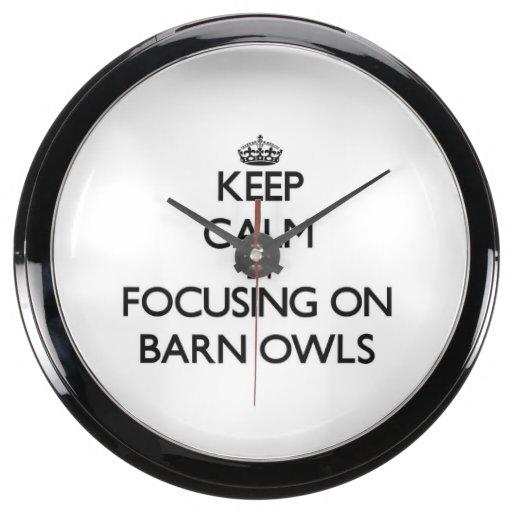 Keep Calm by focusing on Barn Owls Aquarium Clock