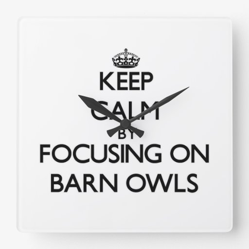 Keep Calm by focusing on Barn Owls Wallclock