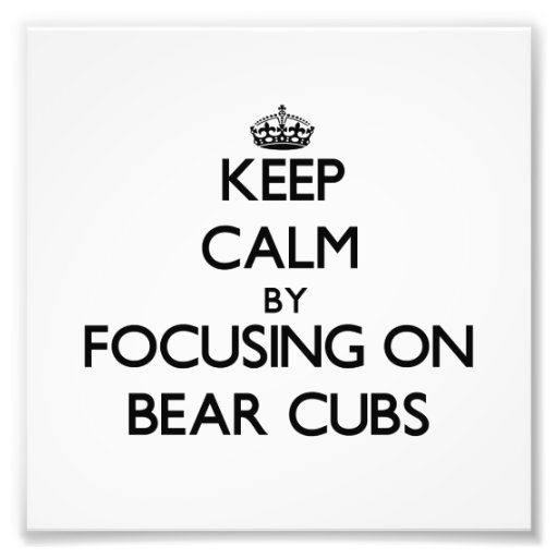 Keep Calm by focusing on Bear Cubs Photographic Print