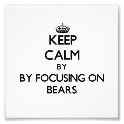 Keep calm by focusing on Bears Photograph