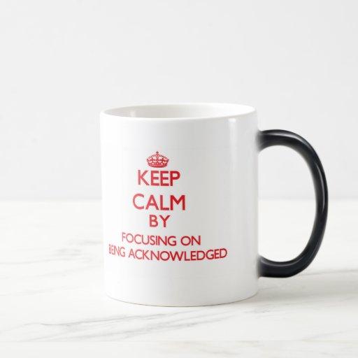 Keep Calm by focusing on Being Acknowledged Mug