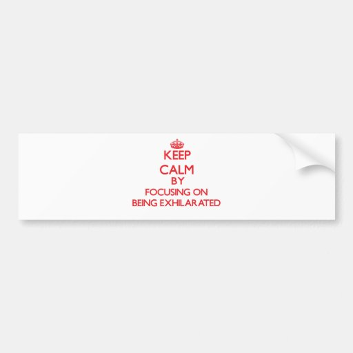 Keep Calm by focusing on BEING EXHILARATED Bumper Stickers