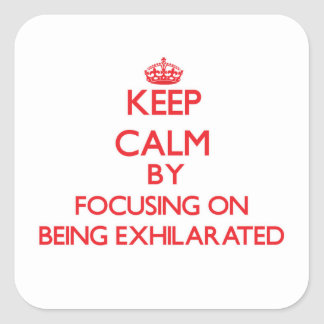 Keep Calm by focusing on BEING EXHILARATED Stickers