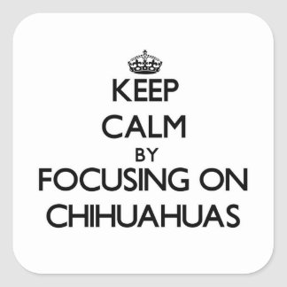 Keep Calm by focusing on Chihuahuas Square Sticker
