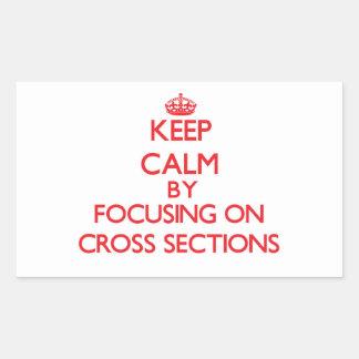 Keep Calm by focusing on Cross Sections Rectangular Sticker