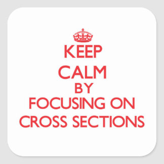 Keep Calm by focusing on Cross Sections Stickers