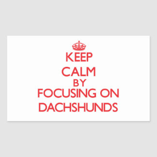 Keep Calm by focusing on Dachshunds Sticker