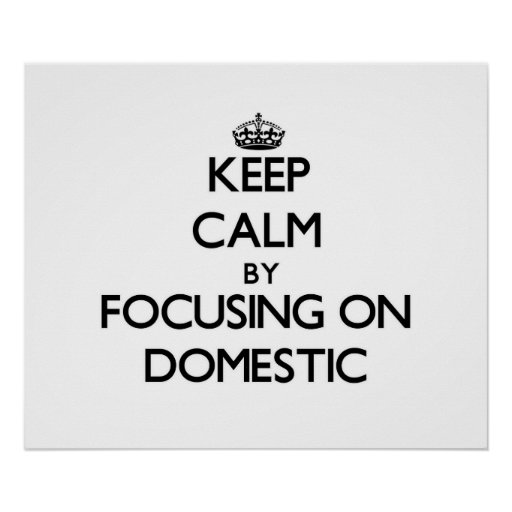 Keep Calm by focusing on Domestic Poster