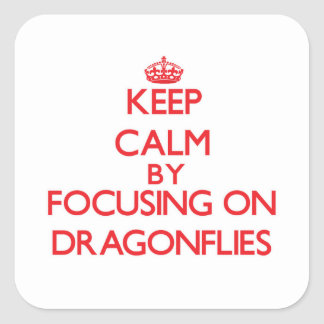 Keep Calm by focusing on Dragonflies Sticker