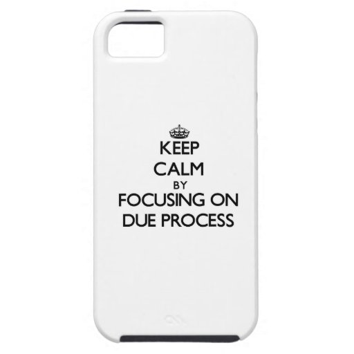 Keep Calm by focusing on Due Process Case For iPhone 5/5S