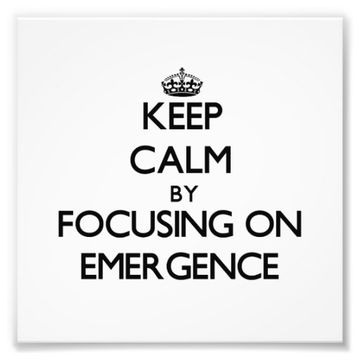 Keep Calm by focusing on EMERGENCE Art Photo