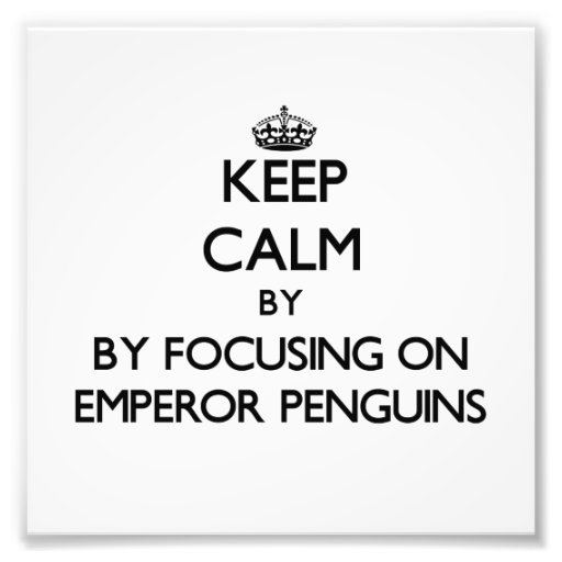 Keep calm by focusing on Emperor Penguins Photographic Print