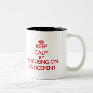 Keep Calm by focusing on ENTICEMENT Mug
