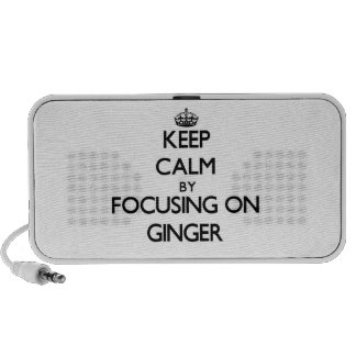 Keep Calm by focusing on Ginger PC Speakers
