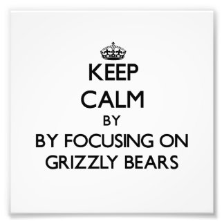 Keep calm by focusing on Grizzly Bears Art Photo