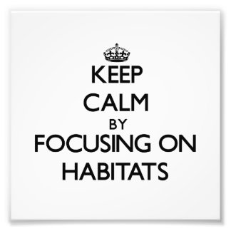 Keep Calm by focusing on Habitats Photographic Print