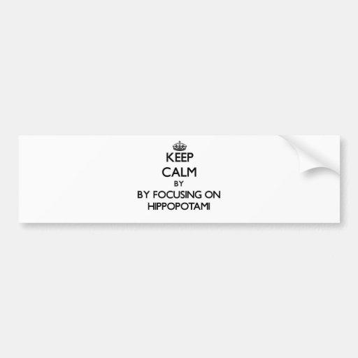 Keep calm by focusing on Hippopotami Bumper Sticker