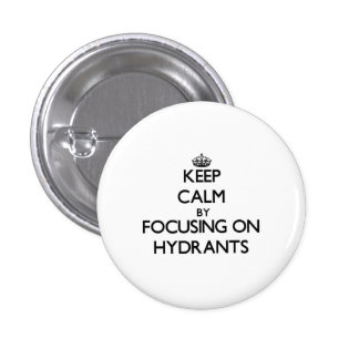 Keep Calm by focusing on Hydrants Pinback Buttons