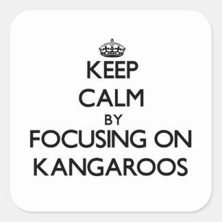 Keep Calm by focusing on Kangaroos Square Sticker