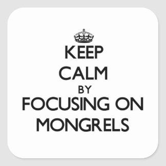 Keep Calm by focusing on Mongrels Square Sticker