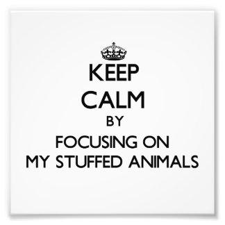 Keep Calm by focusing on My Stuffed Animals Photo Print