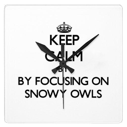 Keep calm by focusing on Snowy Owls Clocks