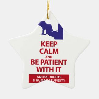 Keep Calm with Human Stupidity Ceramic Ornament