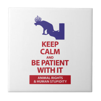 Keep Calm with Human Stupidity Tile