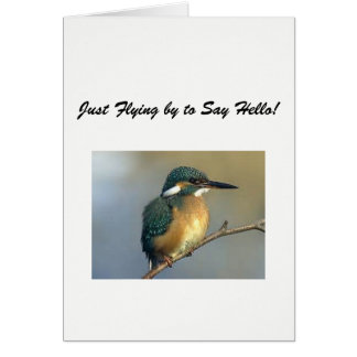 Keep in Touch Cards: Bird Card