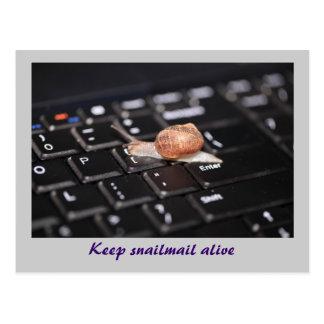 Keep Snailmail alive Postcard