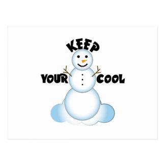 Keep Your Cool Postcard