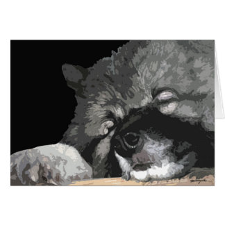Keeshond any occasion greeting card