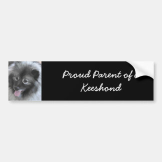 Keeshond (Bailey) Bumper Sticker