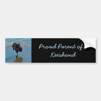 Keeshond Ballet Photograph - Cute Original Dog Art Bumper Sticker